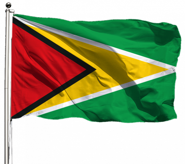 Guyana Flagge Querformat Premium-Qualität