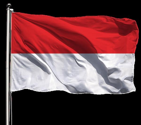Flagge Brandenburg o. Wappen Querformat Premium-Qualität