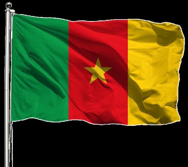 Kamerun Flagge Querformat Premium-Qualität