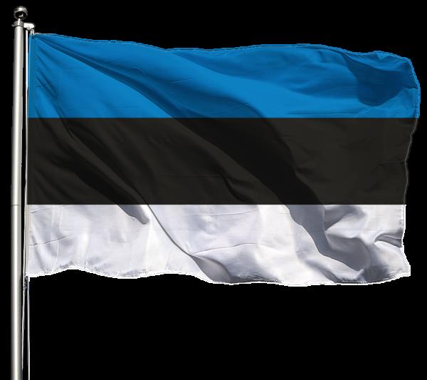 Estland Flagge Querformat Premium-Qualität