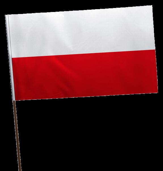 Stockflagge Thüringen ohne Wappen Premium-Qualität